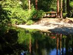 SBD Vacation Rental on Austin Creek, Cazadero CA