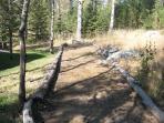 Backyard Horseshoe pit