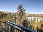 Powderhorn Penthouse, Views, Breckenridge Lodging
