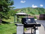 Weber BBQ gas grill during the summer months