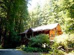 Austin Creekside Retreat, Redwoods, Creek, Private