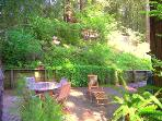 Fairy Circle Cottage, Sunny Patio with Redwood Trees