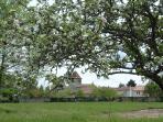 Lovingly Restored France Villa in Aquitaine - La Ferme de la Dronne - Silver Truffle