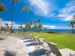 Expansive Manicured Grounds with Oceanfront Chaise Lounges for Everyone