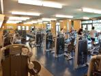 Fully Equipped Gym at Spa Montage - Access Now Included for Full-Rate Reservations