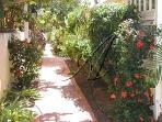 Lovely tropical landscaped walks on property