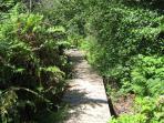 Private Creekside Boardwalk