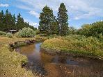 Trout Creek behind house