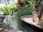 Garden Koa Pond