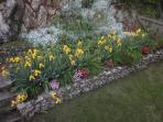 Spring flowers in garden of 1780 Stone House