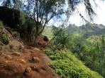 Kalalua Trail can get muddy. Bring the right shoes
