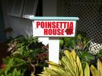 Welcome to Poinsettia House