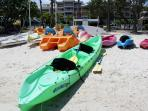 Rent paddle boats, kayaks, snorkel equipment, ect from the Beach hut