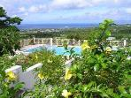 40ft x 20ft private pool with views to the Caribbean and Nevis Peak