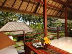 Villa Kanti Ubud Bali - View from Terrace