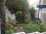 Garden in the courtyard