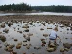 Nearby: Kids love to play in tidal pools during low tide at Frazer Point. Only 2 miles from house.