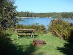 One of many private picnic nooks at Frazer Point, Acadia NP, only 2 miles from the house.