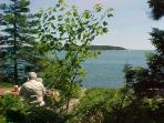 A picnic area overlooking ocean in Milbridge, approx 20 scenic miles