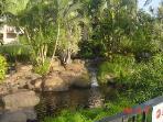 Water falls in garden area.