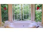 Strawberry leadlight bay windows in bathroom