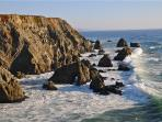 Bodega Bay Head
