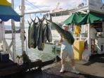 A SUCCESSFUL FISHING TRIP FROM LAHAINA
