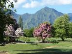 Beauty of the Makai Golf Course a Short Walk from Condo