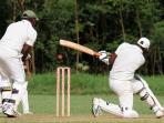 Cricket anyone