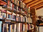 Villa library