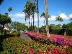 15 Acres of tropical gardens