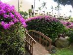 15 acres of tropical gardens