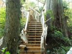 Garden Staircase to the Beach