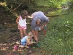 Children, and adults, can spend endless hours in our creek.