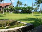 Tropical manicured grounds