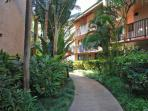 Tropical Grounds