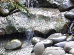 Forest View Stay Studio Waterfall & Pond Below Deck