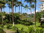 Vista Waikoloa Grounds