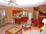 Living area and kitchen-