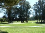 Blacklake Lakes Course #1 Green