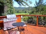 Redwood Retreat, Guerneville Vacation Rental, Vineyard Views