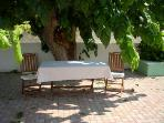 Even on hot days you can enjoy your coffee or meal in the yard. Just go under this tree