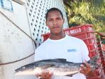 KITCHEN & FOOD: Fish - fresh from the ocean