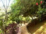 EXTERIOR: Garden - patch to the pool area
