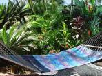 Hammock in triopical garden