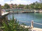 Dolphin Marina