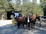 Stagecoach rides (1 mile from cabin)