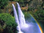 The beautiful Wailua Falls, a 5 minute drive from our condo, a must see!