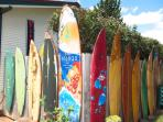 Surfboards at the entrance on the street