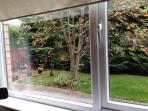 Bird & Wildlife view from your Window (Lower)